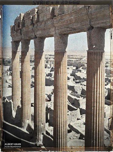 Syrie, Palmyre, Temple du Soleil, Colonnade du Temple du Soleil
