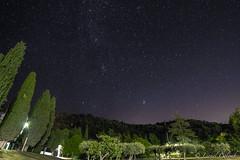 Summer Sky (Lionelcolomb) Tags: villecroze provencealpescôtedazur france fr night sky star artonomy milky way astro dark landscape nocturne extérieur outdoor tree nature