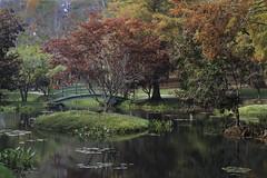 Autumn Colors (phot0wright) Tags: gibbsgardens autumn autumncolors