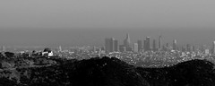 Downtown Observation (AlastairAdams) Tags: los angeles la sunset black white landscape treatment street nature usa panorama