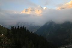 11781602_10206372314980513_1642522646883641750_n (changeyourscreennametopatrick) Tags: switzerland travel trekk hike passport mountains trees cows cheese waterfall wildflower meiringen oberland swiss wanderer