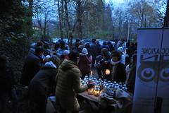 La-magia-del-bosco-di-notte-2016-27