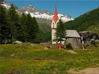 Die Heilig-Geist-Kapelle im Ahrntal -  Südtirol