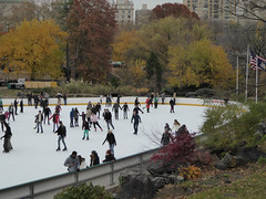 Central Park New York November 2016 (1231) (Richie Wisbey) Tags: new york central park manhattan ulmsted man made vista view spectacular miles walks lakes ice rink trump feeding sparrows hot dog american space open public beauty bow bridge oak trees grass richie richard wisbey flickr explore exploring zoo