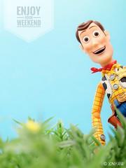 TGIF (XINYAW13) Tags: jessie revoltech toy toyphotography toystory woody