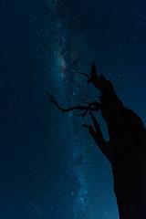 Milky Way over Lake Hume, near Albury, New South Wales, Australia (Strabanephotos) Tags: new lake wales night way star long exposure near south over australia nsw milky hume albury