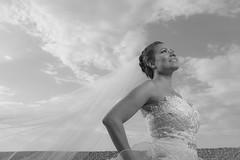 BODA DAYANA MI WEB-10 (amadoclarophoto) Tags: boda playa erick dayana 2014