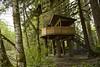 British Columbia Luxury Fishing & Eco Touring 51