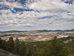 La vega del Jiloca desde el torren de San Cristobal de Daroca (cachanico) Tags: azul valle olympus zaragoza bosque cielo nubes sancristobal pinar e30 aragn daroca polarizador zd1454 jiloca 1454mm seleccionar cachanico