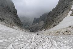 Zejście z przełęczy Passo Travignolo