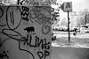 Nashorn by Pilgrim (Toy Lette) Tags: bessar2a id1111 nokton50mmf11 agfaphotoapx100new 115minkipp1