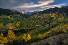 Nothing Gold Can Stay (Bill Bowman) Tags: autumn fall colorado autumncolors aspen elkrange capitolpeak mountdaly capitolcreek