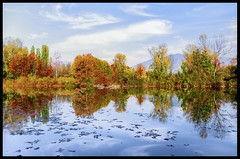 Colorwave (ELtano86) Tags: autumn reflection colors reflex colores reflejo reflexions autunno reflexion d800 eltano86 autunnk