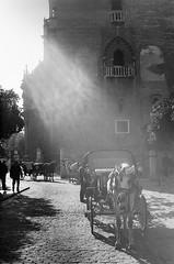 Light in the morning... (ralcains) Tags: monochrome 50mm blackwhite sevilla seville andalucia xp2 canona1 ilford andalousia blanciynegro