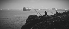 Portishead (Mark Hobbs@Chepstow) Tags: ship portishead avonmouth severnbridge royalportbury