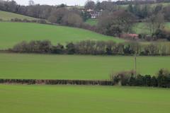 Wealden Winter Fields (Adam Swaine) Tags: uk winter england english rural landscape countryside kent seasons britain fields hedges 2015 swaine darent