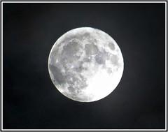 5974 v1 Moon shot (Andy - Busyyyyyyyyy) Tags: 20161114 fff fullmoon iphotocrop mmm moon nightshot picasaborder sss supermoon