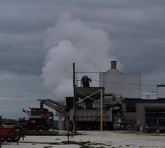 Bivalve, NJ (elisecavicchi) Tags: bivalve new jersey port norris fishing village industrial cloud fog overcast smoke production processing oyster machine dark flock birds seagull mood commercial township