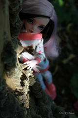 IMG_0193 (Cleo6666) Tags: monsterhigh monster high draculaura deluxe ooak repaint custom mattel doll