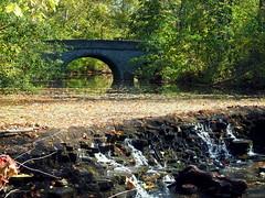 20161024SharonWoods-003 (gglassmeyer) Tags: autumn fall sharonwoods waterfall