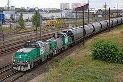 [FR-SNCF] BB 60084 + BB 60002 acheminant une rame transcrales au triage de SPDC DSC_3638_DxO (yael.flament1) Tags: sncf crales agribulk transcrales bb60000 bb60002 bb60084 bb 60000 60002 60084 sotteville saint pierre des corps saintpierredescorps pk2335 tours fret freight