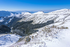 Harry_30982,,,,,,,,,,,,,,,,,Winter,Snow,Hehuan Mountain,Taroko National Park,National Park (HarryTaiwan) Tags:                 winter snow hehuanmountain tarokonationalpark nationalpark     harryhuang   taiwan nikon d800 hgf78354ms35hinetnet adobergb  nantou mountain