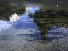 Desdibuixada (queropere) Tags: riu onyar girona reflexes corrent aigua airelliure queropere