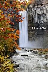 Falls in the fall - Taughannock Falls (HelenC2008) Tags: fall waterfall taughannock taughannockfalls cayuga cayugalake fingerlakes ithaca foliage nikon d810