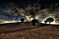 Tutto è pronto (* landscape photographer *) Tags: lucania italy landscapephotographer paesaggio tramonto sunset clouds nuvole colori colors tree alberi nikond90 nikkor flickr 2016 salvyitaly sa sasi salvo salvezza