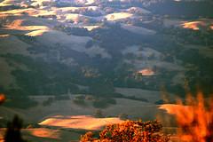 Hello sunshine (Dragonslayer8888) Tags: nature hills mountains fall autumn trees sunshine explore dry colors season light beauty exposure
