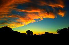 Sun Set in Tucson (chazart7777) Tags: cameraphone cellphone tucson silhouette imagemanipulation gimp photomanipulation photoprocessing postprocessing
