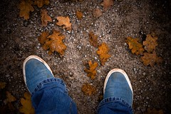 Fallen leaves (Kris Mouser-Brown) Tags: leaves leaf fall autumn winter feet shoes nikon d7200 path colours colors