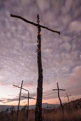 Forest death (alimoche67) Tags: sony josejurado incendio a7 cruces marcsellares igualada montserrat barcelona