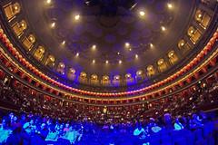 Il Paradiso del musicista / The musician's paradise (Royal Albert Hall, London, United Kingdom) (AndreaPucci) Tags: royal albert hall london uk southkensington zucchero concert andreapucci canoneos60