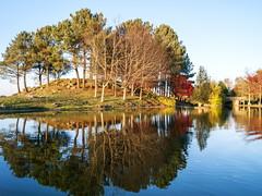 Reflejos y colores--_B290066 (peruchojr) Tags: lago bosque montaa montedospozos valladares vigo wow