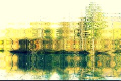 Au Plan d'eau, art (Sebmanstar) Tags: couleur color creation creative creatif transformed work pentax photography abstract abstrait art imagination imagine manipulation nature research forêt forest digital photoshop