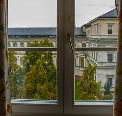 (raymond_zoller) Tags: baum deutschland fenster germany landscape ablak arbre drzewo finestra okno prozor tree ventana window mnchen rbol fentre