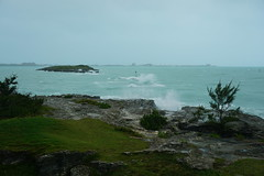 After the hurricane (Bill Boaden) Tags: bermuda spanishpoint pembrokeparish