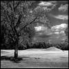 Hopewell Mound 09062302 (jimhairphoto) Tags: hopewell mound ohio america 120 film hasselblad 120film ilford fp4 blackandwhite blancetnoir schwarzeaufweis blancoynegro blancinegre siyahrebeyaz jimhairphoto