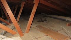 IMG_1444 attic scuttlehole look north west walk boards (ceztom) Tags: march 14 2016 home goleta new scuttlehole attic