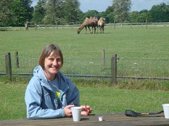 Tracy and the Bactrian Camels at The Cotswold Wildlife Park (Abbey_L) Tags: animal bactriancamel camel cotswoldwildlifeparkandgardens cotswolds mammal oxfordshire people tgpio thebabe tracy zoo