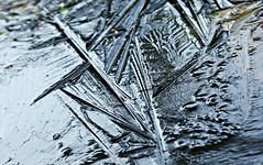 Ice textures / Eisstrukturen (Magreen2) Tags: ice textures pondcoldicy season weather gartenteich eis eisig kalt jahreszeit