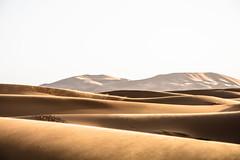 Horizonte Marciano (andreicunha) Tags: africa maroc trip horizon landscape desert marrocos winter
