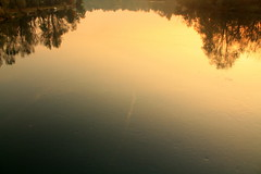 IMG_2323 (J jeid) Tags: riflessi reflection fiume river adda tramonto sunset