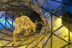 Reindeer Games (frankieleon) Tags: design shape window move join jump leap glass holiday reindeer lights decoration frankfurt germany mall galeria kaufhof season xmas christmas