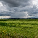 Storm Clouds Over The Marsh