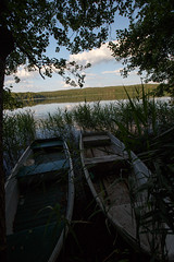 verlassene Ruderboote am Großen Pälitzsee