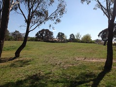 from the creek up to a playground (spelio) Tags: creek walking landscapes walk oct australia canberra stroll act riparian ngunnawal roaming australiancapitalterritory 2015 2913 ginninderracreek