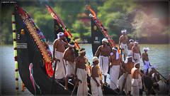 IMG_4017 (|| Nellickal Palliyodam ||) Tags: india race boat snake kerala krishna aranmula avittam parthasarathy vallamkali palliyodam malakkara nellickal jalothsavam