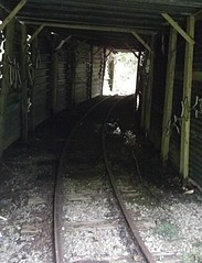 Abandoned Railway Tunnel (Emearg Draw) Tags: tunnel narrowgaugerailway clydevalley